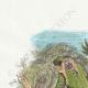 DÉTAILS 01 | Fables de La Fontaine - La Forêt et le Bucheron