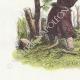 DÉTAILS 02   Fables de La Fontaine - Le Philosophe Scythe