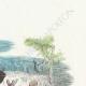 DÉTAILS 03   Fables de La Fontaine - Le Philosophe Scythe