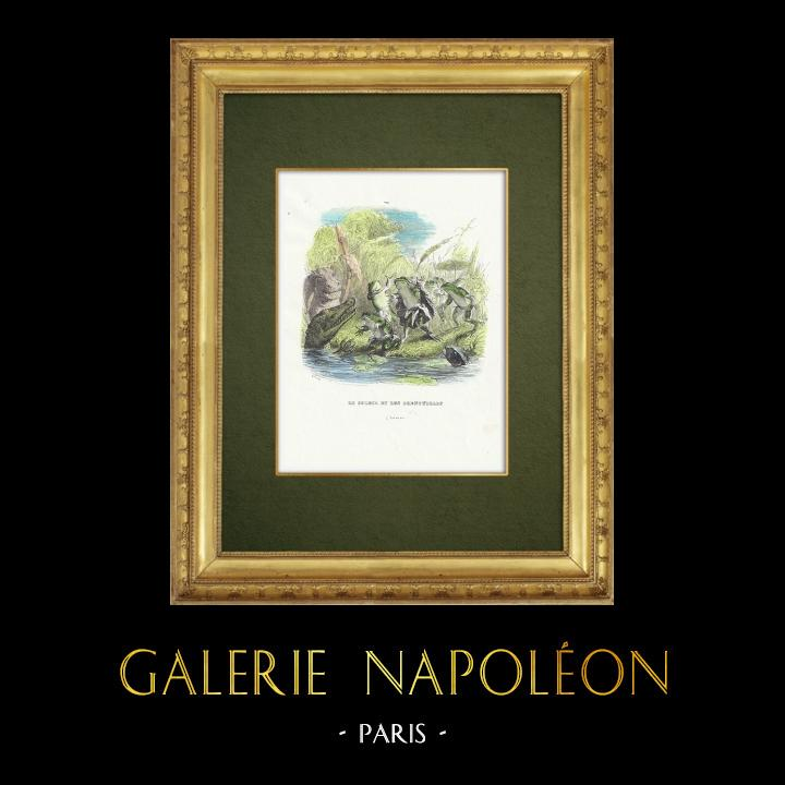 Gravures Anciennes & Dessins   Fables de La Fontaine - Le Soleil et les Grenouilles   Gravure sur bois   1859