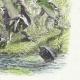 DÉTAILS 04   Fables de La Fontaine - Le Soleil et les Grenouilles