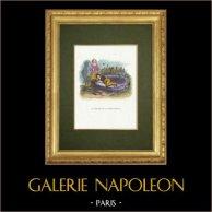 Fables of La Fontaine - La Fortune et le Jeune Enfant