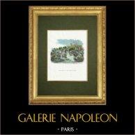 Fables of La Fontaine - Le Soleil et les Grenouilles