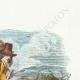 DÉTAILS 03 | Fables de La Fontaine - La Chauve Souris, le Buisson et le Canard