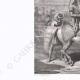 DÉTAILS 02 | Portrait équestre de Randjet Sing Baadour (?-1839)
