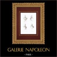 Busts - Caffarelli du Falga (1756-1799) - Dominique Martin Dupuy (1767-1798) - Louis-André Bon (1758-1799) - Jean-Antoine Marbot (1754-1800)