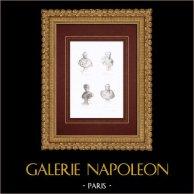 Buste - Jacques-Louis David (1748-1825) - Girodet-Trioson (1767-1824) - Pierre-Narcisse Guérin (1774-1833) - François Gérard (1770-1837)