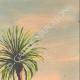 DETAILS 04 | View of Ksar Maadid in Erfoud - Arfoud (Morocco)
