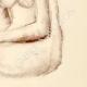 DÉTAILS 04 | Etude de Nu Féminin (Huber) 20/76