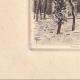 DÉTAILS 03 | Château de Bagatelle - Bois de Boulogne - Ile de France