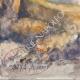 DÉTAILS 06   Vue de Ivano-Fracena - Château - Castel Ivano - Trentin - Italie (Henriette Quillier)