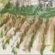 DÉTAILS 03   Château imaginaire - Tour de l'Honneur - Vestige du château - Lesparre-Médoc - Gironde - France (Henriette Quillier)