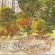DÉTAILS 06 | Château imaginaire - Beaumont-du-Ventoux - Vaucluse - France (Henriette Quillier)