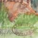 DETAILS 06   Imaginary Castle - Rorthey - Vosges - France (Henriette Quillier)