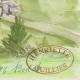 DETAILS 06 | Imaginary Castle - Bodet - Vendée - France (Henriette Quillier)
