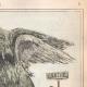 DÉTAILS 05 | Caricature de la Guerre d'Indépendance Italienne - 1862 - Lion de Saint Marc - Vénétie - Autriche - Venise - Il occupe tout mon monde !