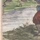 DÉTAILS 02   Caricature de la Guerre d'Indépendance Italienne - 1859 - Rives du Pô  - Farceurs d'autrichiens !