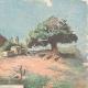 DÉTAILS 03   Guerre italo-éthiopienne - Derniers événements en Afrique - 1895