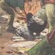 DETAILS 06   Uprising in Acerra - Campania - Italy - 1895