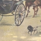 DETAILS 04 | Duke and Duchess of Aosta in Villa Borghese - Rome - 1895
