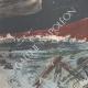 DÉTAILS 02 | Catastrophe maritime à l'Île du Tino - Ligurie - Italie - 1895
