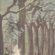 DÉTAILS 01 | Une sentinelle tue un jardinier du Tsar, le croyant nihiliste - Krasnoe Selo - Russie - 1897