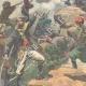 DÉTAILS 02 | Guerre gréco-turque - Combat à la frontière - 1897