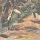 DÉTAILS 05 | Guerre gréco-turque - Combat à la frontière - 1897
