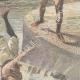 DÉTAILS 04 | Jeune fille noyée lors d'une excursion en canoë sur le Tibre - Italie - 1897