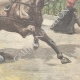 DÉTAILS 04 | Mort d'un garde par un cheval en fuite - Rome - 1897