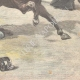 DÉTAILS 06 | Mort d'un garde par un cheval en fuite - Rome - 1897