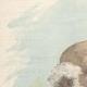 DÉTAILS 01 | Portrait de Benedetto Brin (1833-1898)