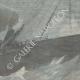 DETAILS 03   Shipwreck of the SS La Bourgogne - 1898