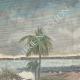 DÉTAILS 01 | Guerre hispano-américaine - Reddition de la flotte espagnole - Santiago de Cuba - 1898