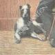 DÉTAILS 05 | Portrait de Otto von Bismarck assis (1815-1898)