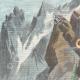 DETAILS 01   Accident in the Alps - Veisivi peak - Canton of Valais - Switzerland - 1898