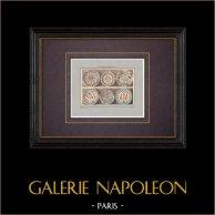 Céramiques orientales - Assiettes dites de Rhodes - XVI et XVIIe siècle - Grèce | Impression originale. Anonyme. Coloriée au pochoir. 1920
