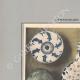 DÉTAILS 01 | Céramiques orientales - Poterie - Faïence - Porcelaine de Perse - Du XVIe au XVIIIe siècle