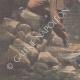 DÉTAILS 05 | Sauvetage d'un soldat tombé dans un trou depuis vingt-huit jours - Brest - 1901
