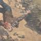 DETAILS 06 | A man and a mule fall from the Airoles bridge near Nîmes - France - 1901
