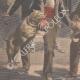 DÉTAILS 02   Deux chiens sauvent leur maitre attaqué par des brigands à Paris - 1901