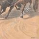 DÉTAILS 06 | Un garçon arrête un cheval emballé à Choisy-le-Roi - Ile de France - 1901