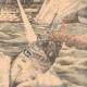DÉTAILS 04   Guerre russo-japonaise - Torpilleurs japonais contre flotte russe à Port-Arthur - Chine - 1904