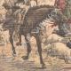 DÉTAILS 05 | Incendies dans les forêts d'Algérie - Afrique du Nord - 1904