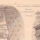 DETAILS 02 | Bank - Caisse d'Epargne - Fontainebleau - France (Courtois-Suffit)