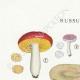 DÉTAILS 01   Mycologie - Champignon - Russula - Nitida Pers Pl.64