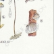 DETAILS 08   Mycology - Mushroom - Marasmius - Mulleus Pl.69