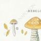 DÉTAILS 01 | Mycologie - Champignon - Hebeloma - Circinans Pl.97