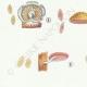 DÉTAILS 02 | Mycologie - Champignon - Crepidotus Pl.131