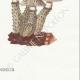 DÉTAILS 06 | Mycologie - Champignon - Stropharia Pl.139